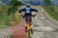Bicicleta de Montaña 3D