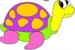 Colorea las tortugas