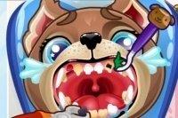 El cachorrito va al dentista