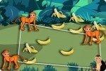 Monos furtivos