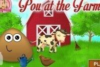 Pou en la granja