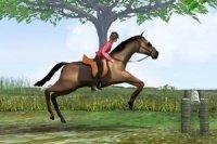 Salto de caballos